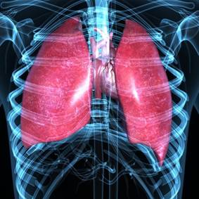 Regenerative Medicine Breakthrough Pushes COPD Treatment Forward, Marks Win For Method